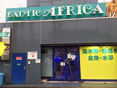 EXOTIC_AFRICA1