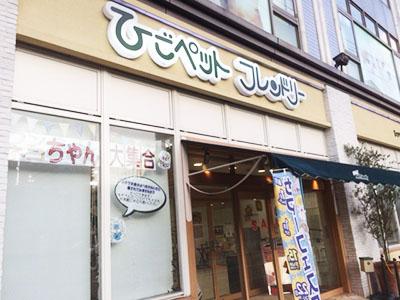 大阪市都島区ひごペットフレンドリーベルファⅡ都島店