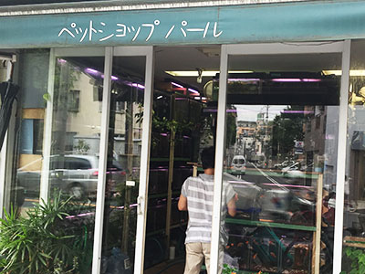 大阪市北区のペットショップ | 店舗の口コミ・評判 …
