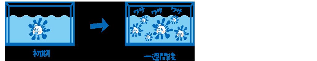 uparuo_suisou2