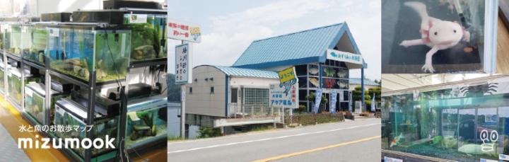 無料の水族館_アクア東条