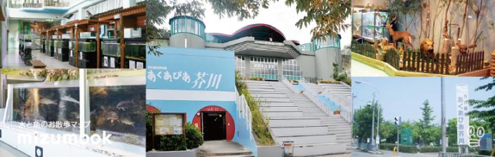 無料の水族館_あくあぴあ芥川