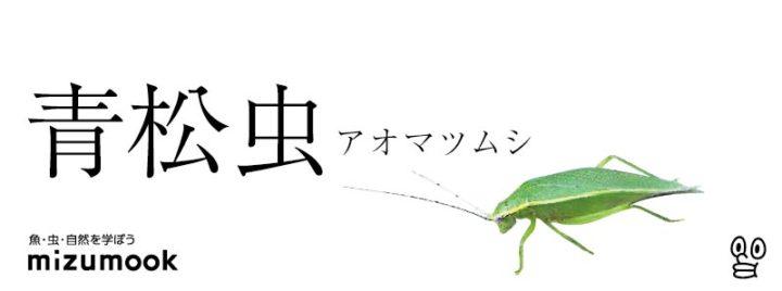 autumn-bug-ao-matsu-musi