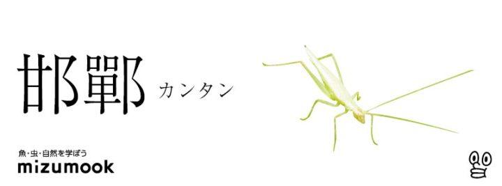 autumn-bug-kantan