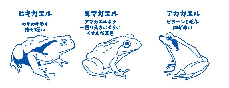 hiki_numa_aka-03