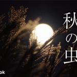 綺麗な声で鳴く!秋の虫9種類をご紹介!/動画・漢字