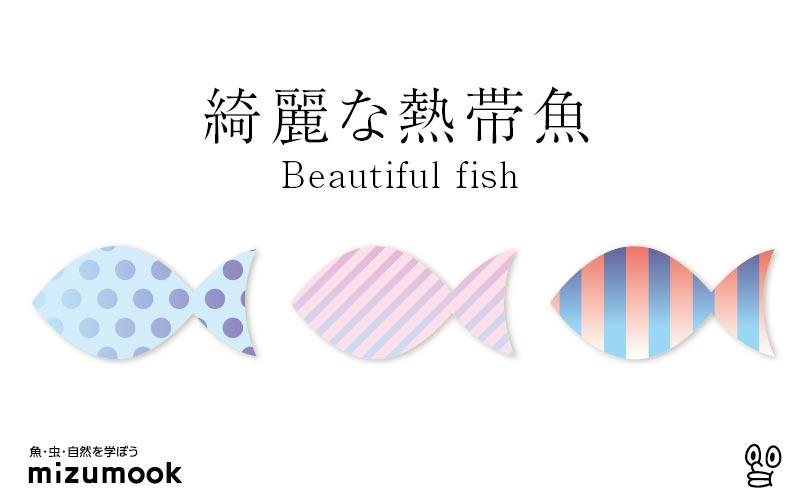 綺麗な熱帯魚/全25種類