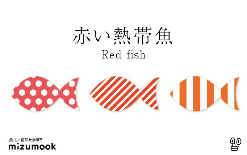 赤い熱帯魚/全12種類