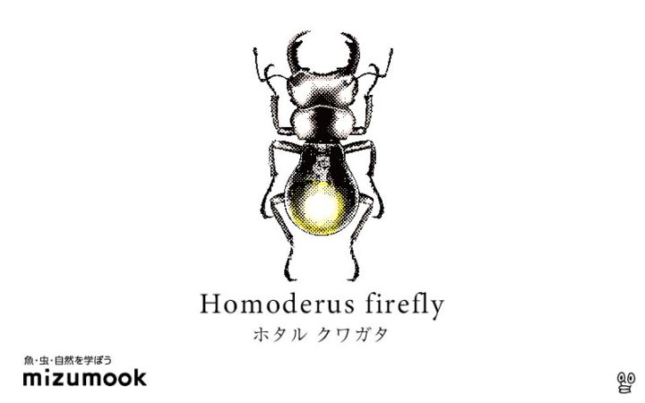 stag-beetle-homoderus-firefly