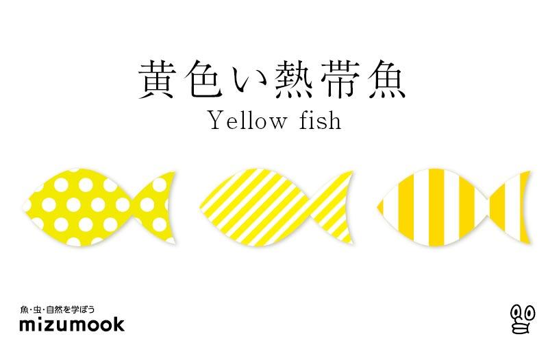 黄色い熱帯魚/全14種類